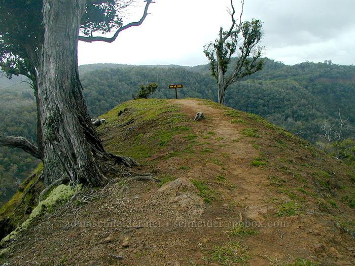 'End of Trail' sign [Po'omau Canyon Ditch Trail, Koke'e State Park, Kaua'i, Hawaii]
