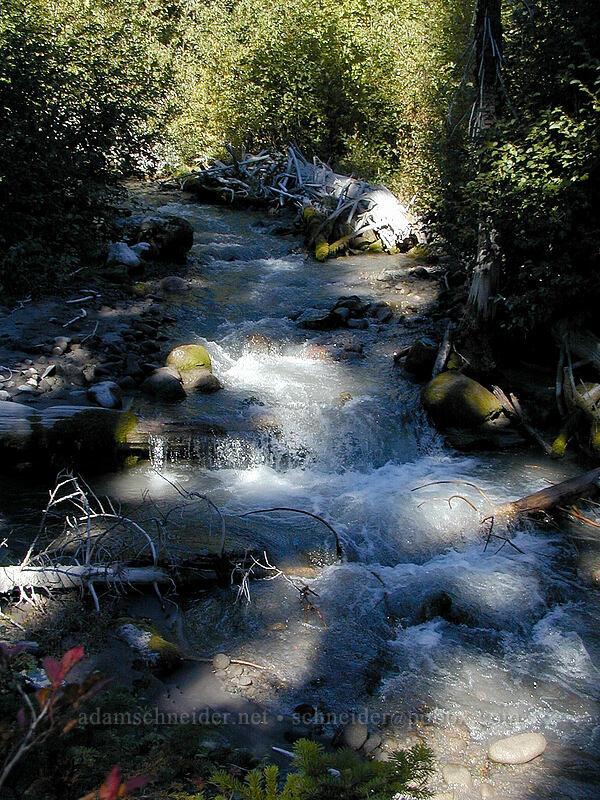 Clark Creek [Elk Meadows Trail, Mt. Hood Wilderness, Oregon]