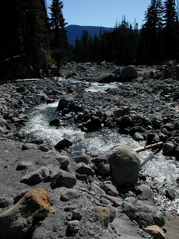Newton Creek [Elk Meadows Trail, Mt. Hood Wilderness, Oregon]