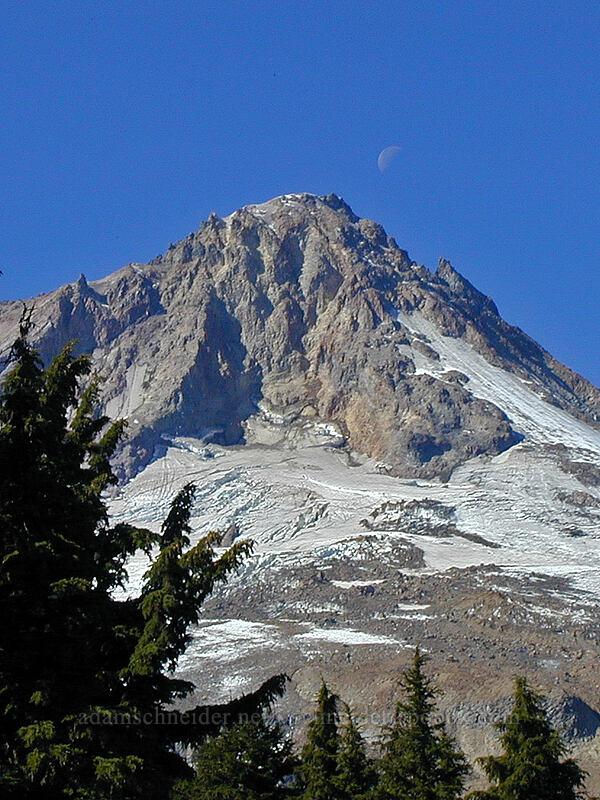 moon over Mount Hood [Timberline Trail, Mt. Hood Wilderness, Oregon]