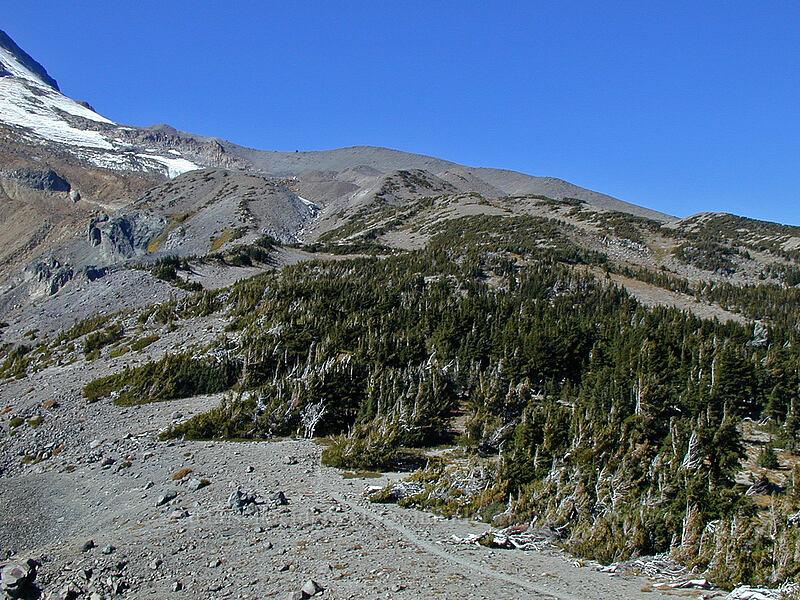 south side of Cooper Spur [Gnarl Ridge, Mt. Hood Wilderness, Oregon]