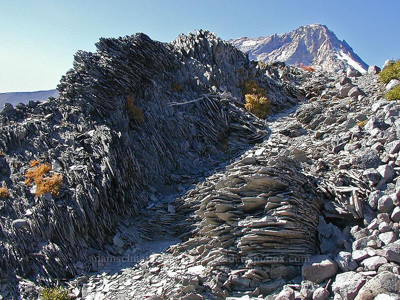 huge piles of shattered dacite [Gnarl Ridge, Mt. Hood Wilderness, Oregon]