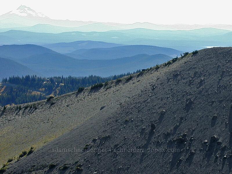 View to the south across Newton Creek Canyon [Gnarl Ridge, Mt. Hood Wilderness, Oregon]