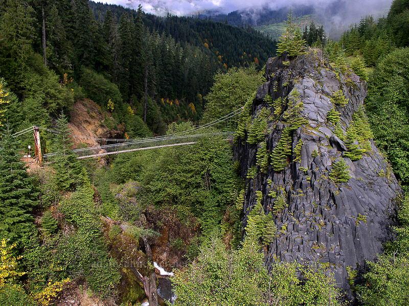 Suspension bridge [Lava Canyon Trail, Mt. St. Helens N.V.M., Washington]