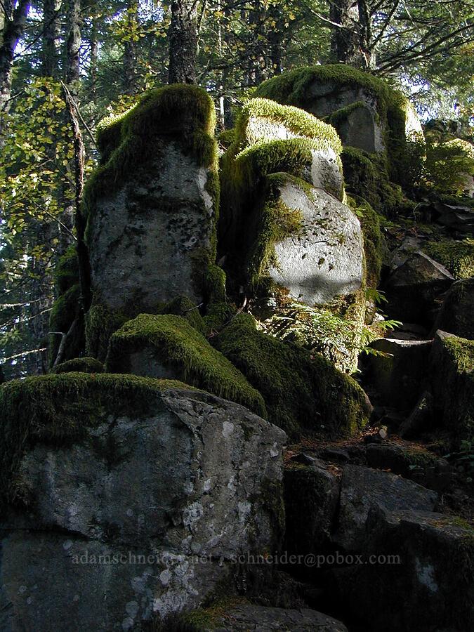 basalt pinnacles [Ruckel Ridge Trail, Columbia River Gorge, Oregon]