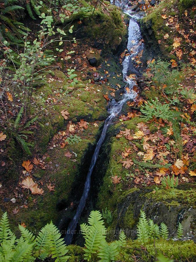 Ruckel Creek [Old Gorge Highway, Columbia River Gorge, Oregon]
