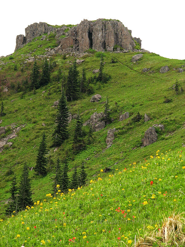rocky crags [Ed's Trail, Silver Star Mtn., Gifford Pinchot National Forest, Washington]