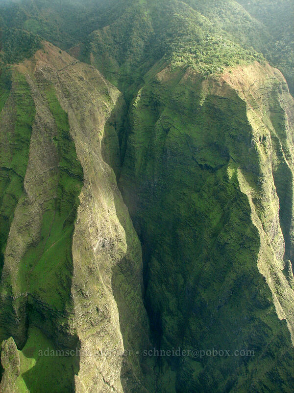 Awa'awapuhi Valley [airplane tour, Kaua'i, Hawaii]