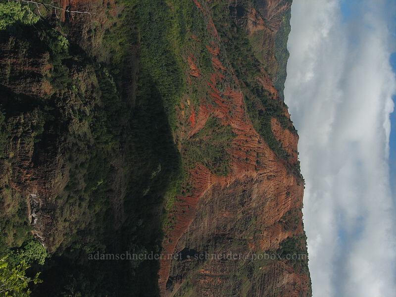 Waimea Canyon [Kukui Trail, Waimea Canyon State Park, Kaua'i, Hawaii]
