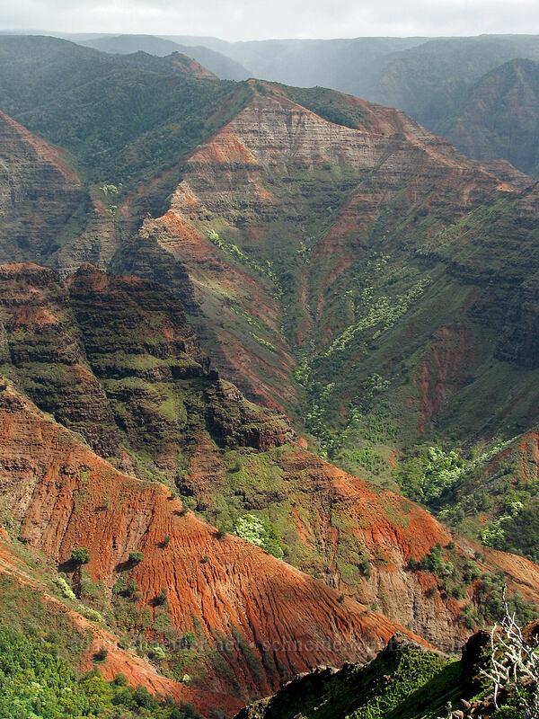 Waimea Canyon [Highway 550, Waimea Canyon State Park, Kaua'i, Hawaii]