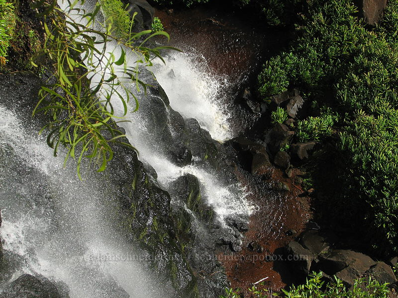 Upper Waipo'o Falls [Canyon Trail, Koke'e State Park, Kaua'i, Hawaii]