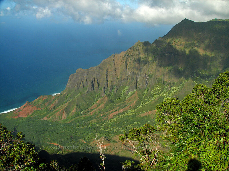 Kalalau Valley [Kalalau Lookout, Koke'e State Park, Kaua'i, Hawaii]