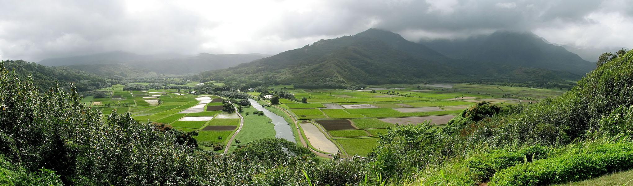 Hanalei Valley panorama [Hanalei Valley overlook, Princeville, Kaua'i, Hawaii]