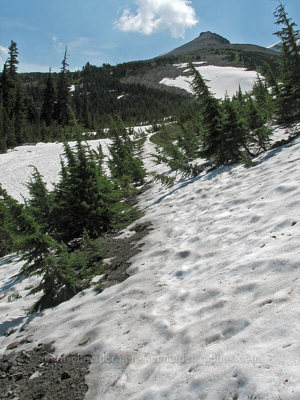 Barrett Spur and a very snowy trail [Timberline Trail, Mt. Hood Wilderness, Oregon, United States]