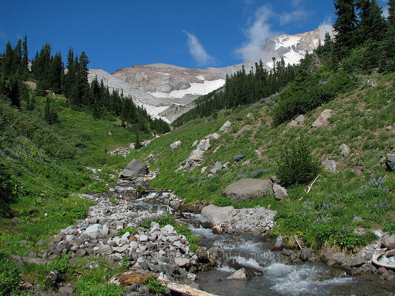 Clark Creek [Timberline Trail, Mt. Hood National Forest, Oregon, United States]