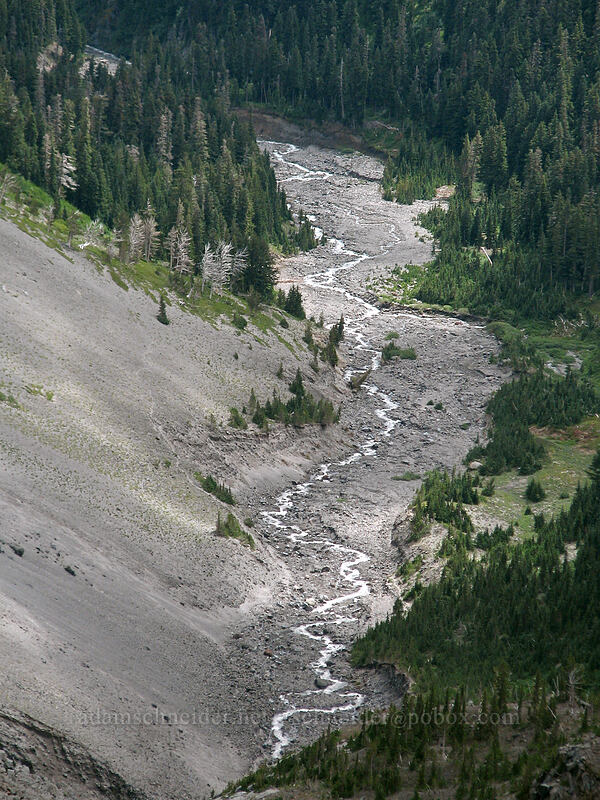 Clark Creek [Newton-Clark Ridge, Mt. Hood National Forest, Oregon, United States]