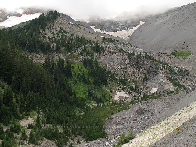 valley of the northernmost fork of Clark Creek [TImberline Trail, Mt. Hood National Forest, Oregon, United States]
