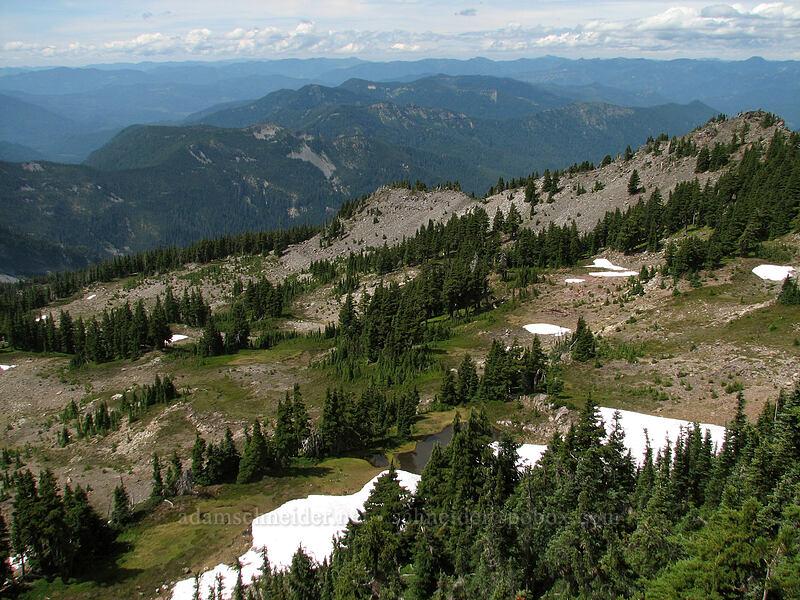 view to the northwest [Park Ridge, Mt. Jefferson Wilderness, Oregon]