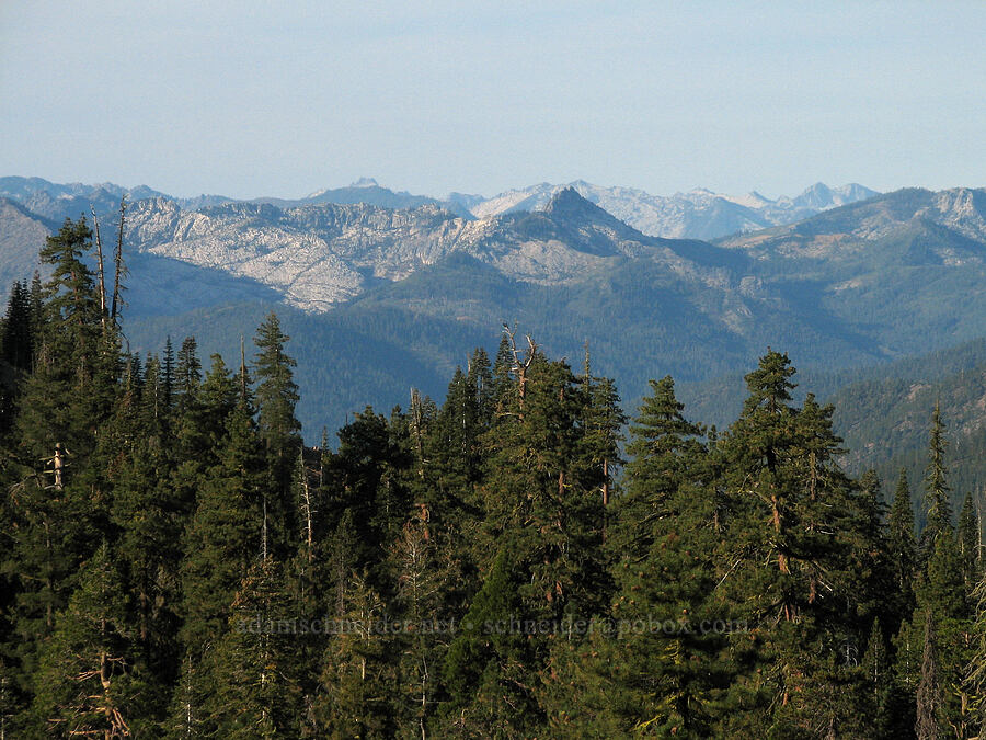 Trinity Alps [above Deadfall Meadows, Shasta-Trinity National Forest, California]