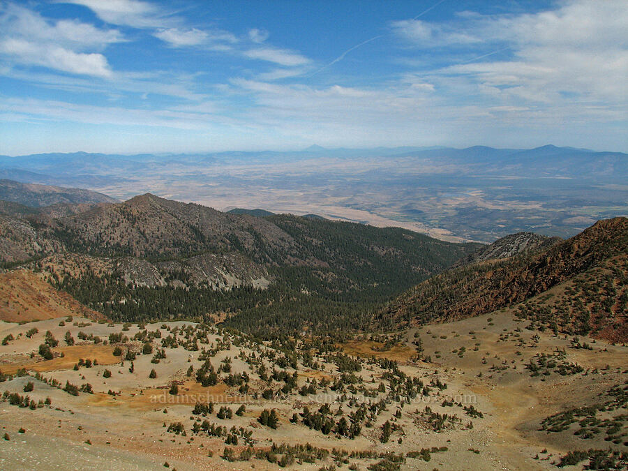 Shasta Valley [summit of Mt. Eddy, Shasta-Trinity National Forest, California]
