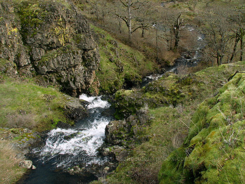 cascades on Labyrinth Creek [The Labyrinth, Klickitat County, Washington]