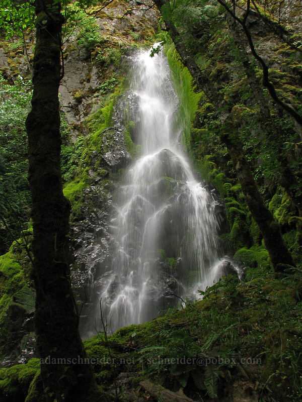 Summit Creek Falls [Summit Creek Canyon, Columbia River Gorge, Oregon]