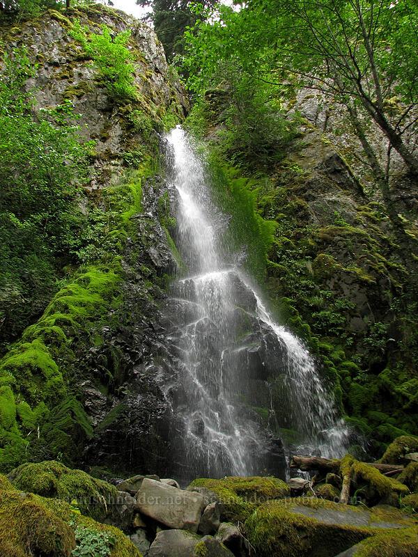 Summit Creek Falls [Summit Creek Canyon, Columbia River Gorge, Oregon]