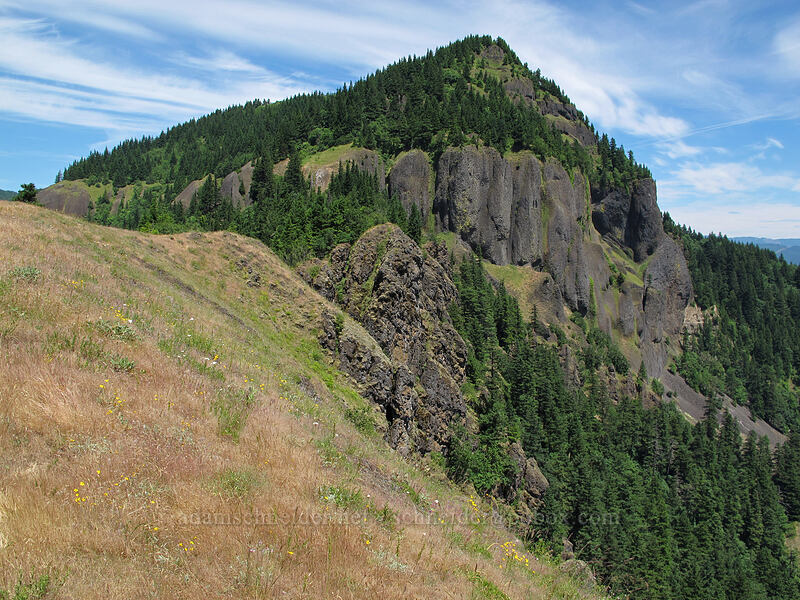 Hamilton Mountain [Little Hamilton Mountain, Beacon Rock State Park, Washington]