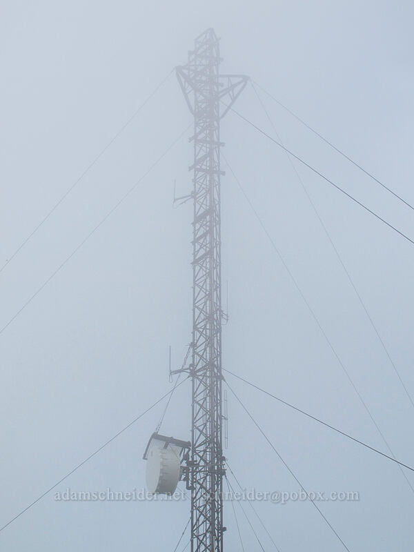 radio tower in the clouds [Mt. Defiance summit, Columbia River Gorge, Oregon]