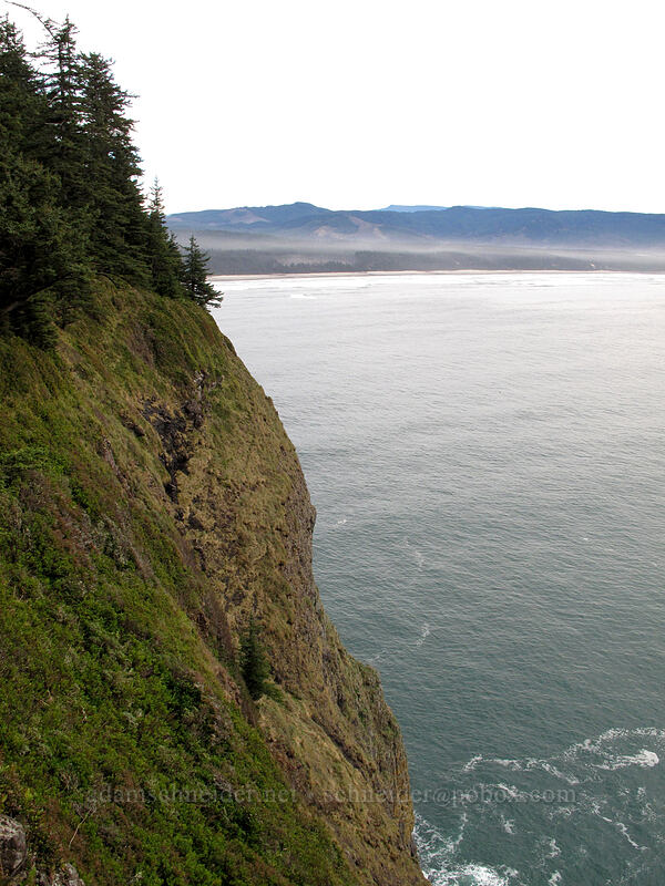 beach south of Cape Lookout [Cape Lookout State Park, Tillamook County, Oregon]
