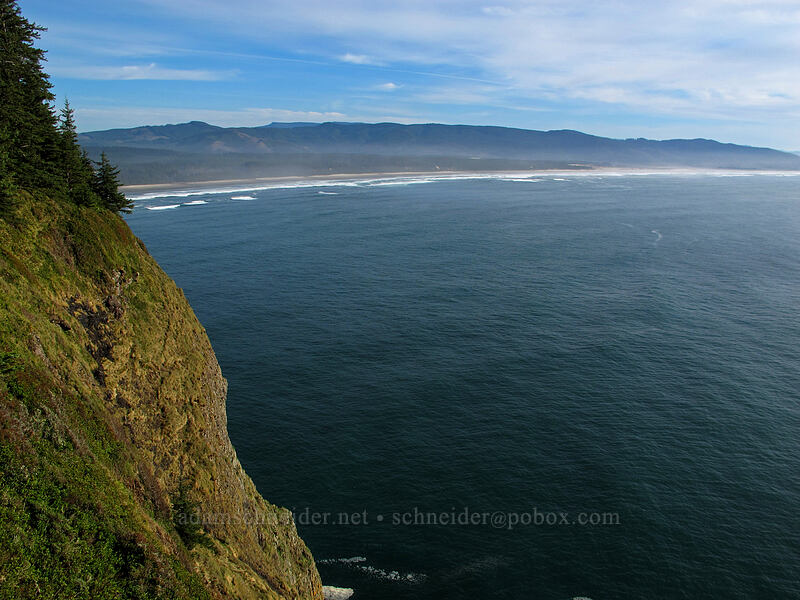 very steep hillside [Cape Lookout State Park, Tillamook County, Oregon]