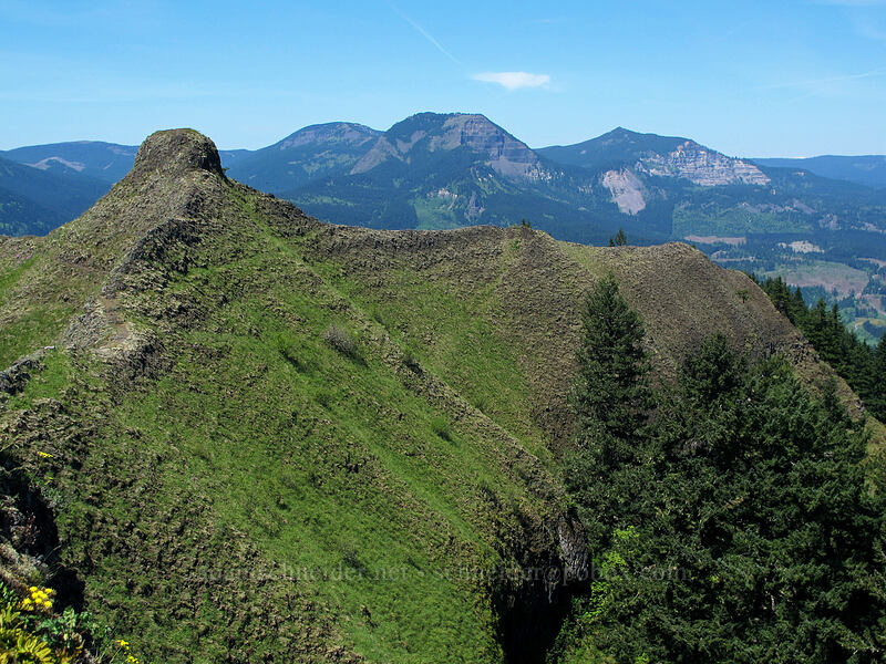 Munra Point, Table Mountain, & Greenleaf Peak [Munra Point, Columbia River Gorge, Oregon]