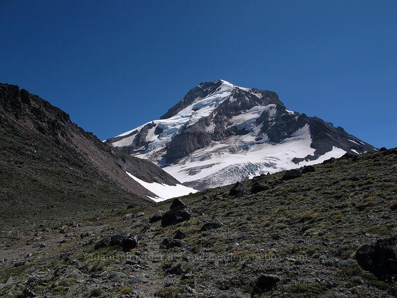 Barrett Spur & Mount Hood [above Wy'East Basin, Mt. Hood Wilderness, Oregon]