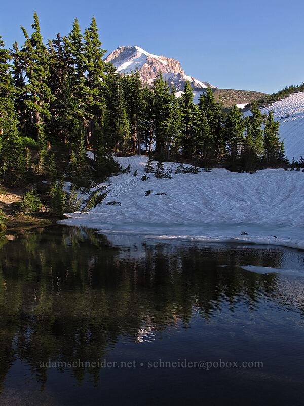 Mount Hood & Dollar Lake [Dollar Lake, Mt. Hood Wilderness, Oregon]
