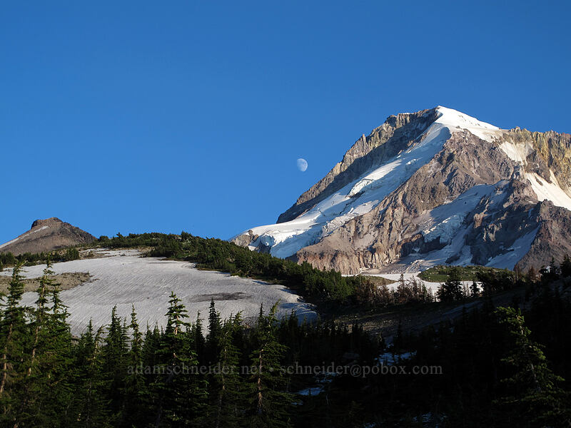 Barrett Spur, Mount Hood, & the moon [Vista Ridge Trail, Mt. Hood Wilderness, Oregon]
