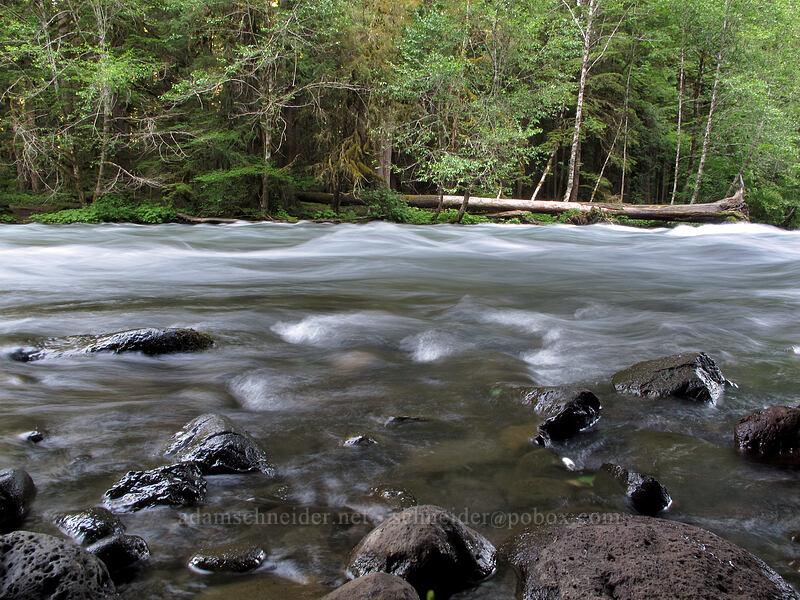 McKenzie River [Bigelow Hot Spring, Willamette National Forest, Oregon]