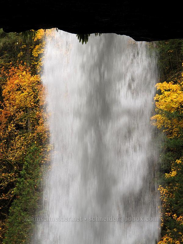 North Falls [Canyon Trail, Silver Falls State Park, Oregon]