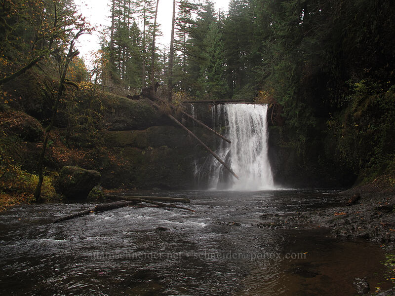 Upper North Falls [Canyon Trail, Silver Falls State Park, Oregon]