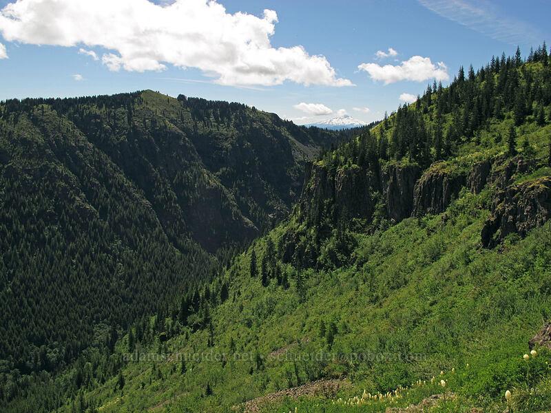 Star Creek Valley [Ed's Trail, Silver Star Mountain, Gifford Pinchot Nat'l Forest, Washington]