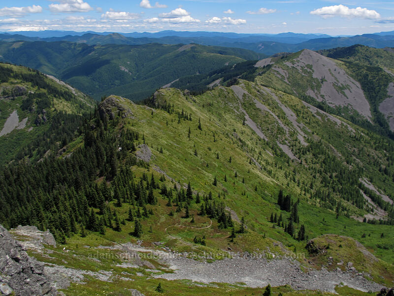 view to the east [Silver Star Mountain summit, Gifford Pinchot Nat'l Forest, Washington]