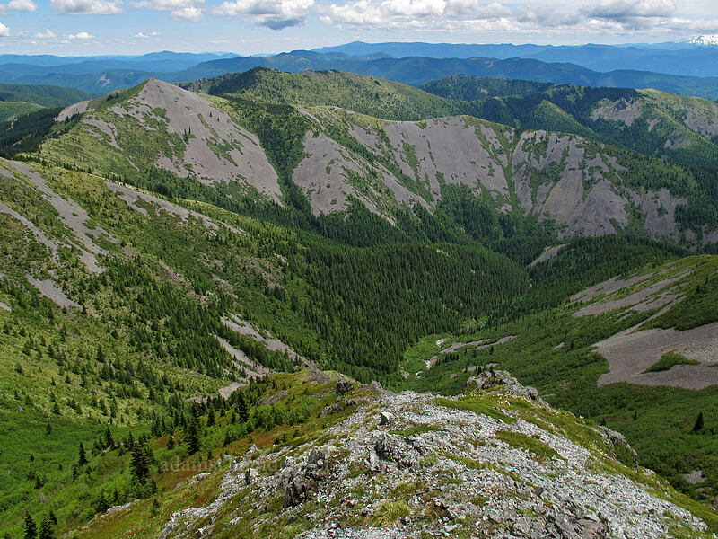 Little Baldy [Silver Star Mountain summit, Gifford Pinchot Nat'l Forest, Washington]