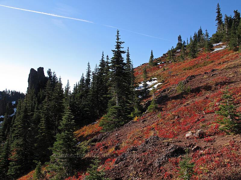 Bird Mountain pinnacles & bright fall colors [Bird Mountain, Indian Heaven Wilderness, Washington]