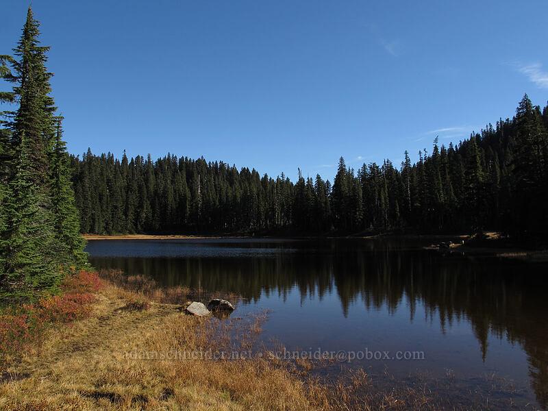 Junction Lake [Indian Heaven Trail, Indian Heaven Wilderness, Washington]
