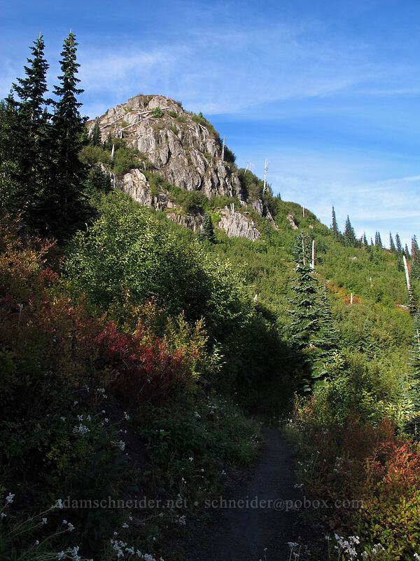 bluff above Norway Pass [Boundary Trail, Mt. St. Helens National Volcanic Monument, Washington]