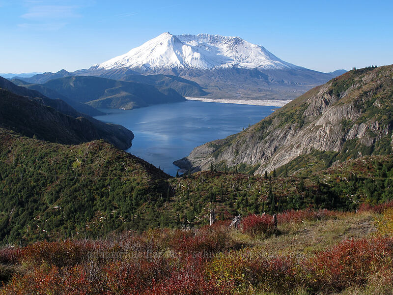 Mt. St. Helens & Spirit Lake [Bear Pass, Mt. St. Helens National Volcanic Monument, Washington]