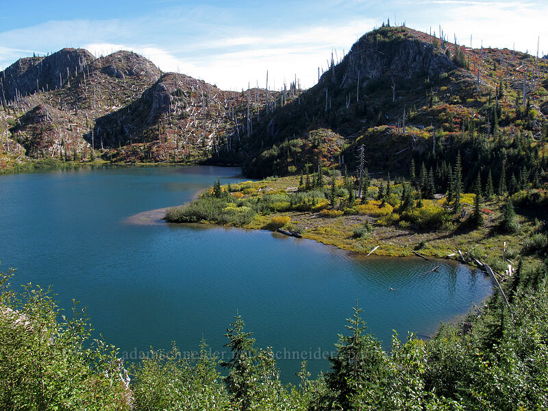 Panhandle Lake [Lakes Trail, Mt. St. Helens National Volcanic Monument, Washington]