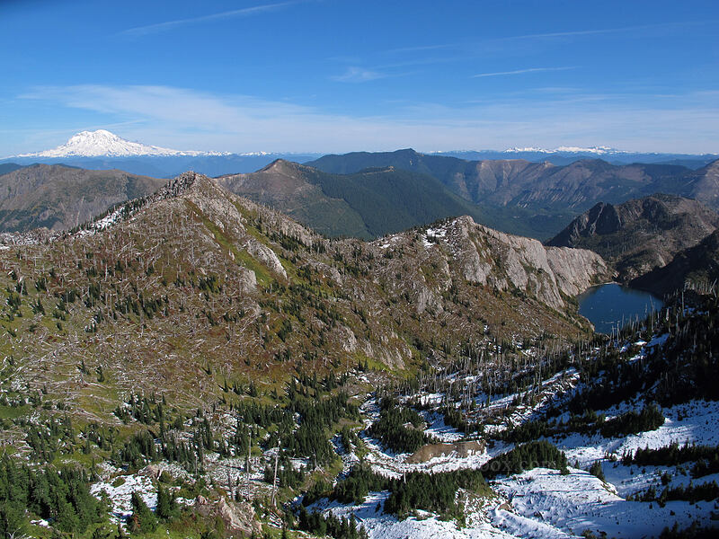 view to the northeast [Mt. Whittier Trail, Mt. St. Helens National Volcanic Monument, Washington]