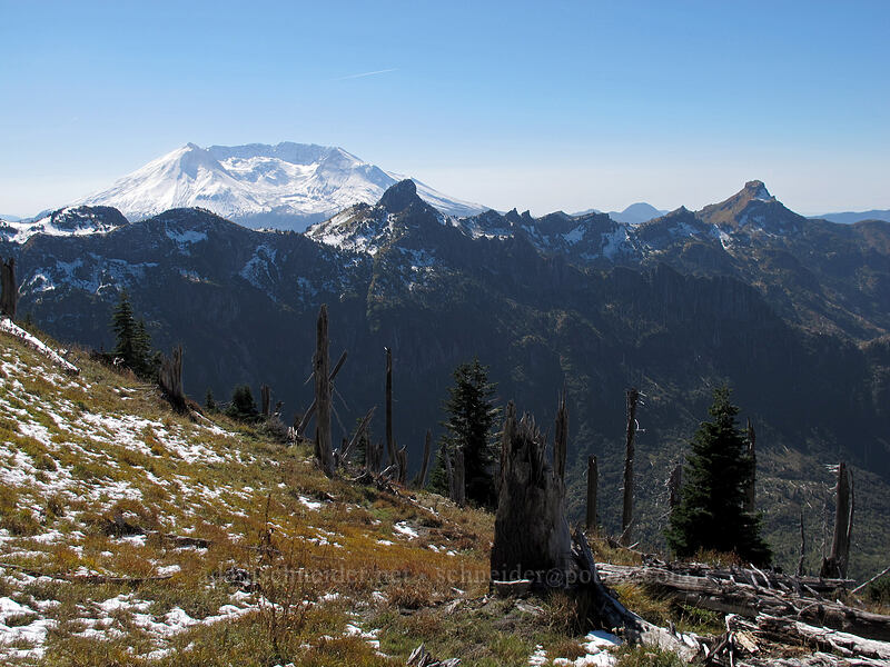 Mt. St. Helens, The Dome, & Coldwater Peak [Mt. Whittier Trail, Mt. St. Helens National Volcanic Monument, Washington]