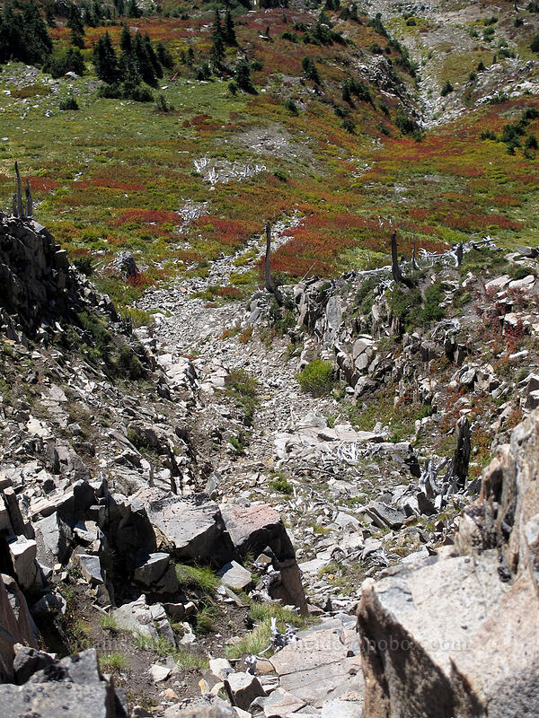 rocky debris & fall colors below the trail [Mt. Whittier Trail, Mt. St. Helens National Volcanic Monument, Washington]