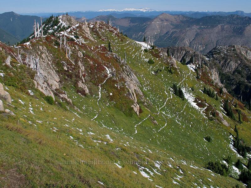ridge above Boot Lake [Mt. Whittier Trail, Mt. St. Helens National Volcanic Monument, Washington]